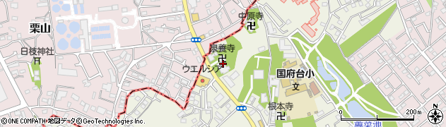 泉養寺周辺の地図