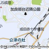千葉県成田市飯田町161-60