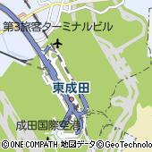 成田国際空港(成田空港)