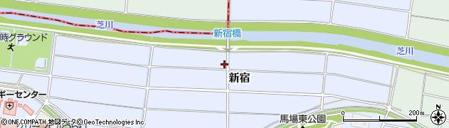 埼玉県さいたま市緑区新宿周辺の地図