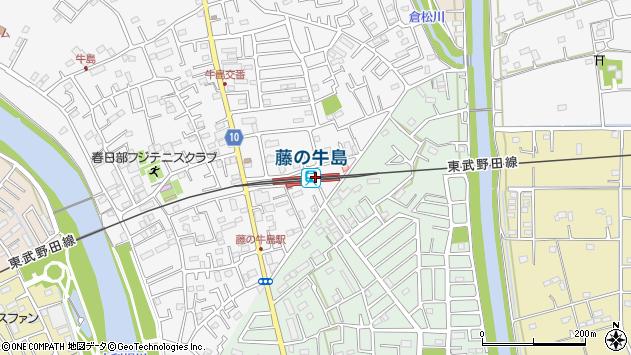 藤の牛島駅(埼玉県春日部市)の地図・口コミ・周辺情報│ ...