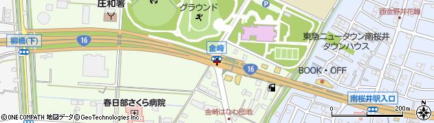 金崎周辺の地図