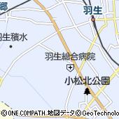 埼玉純真短期大学