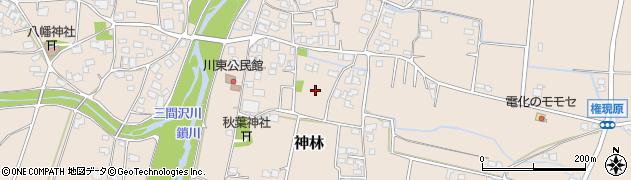 長野県松本市神林(川東)周辺の地図