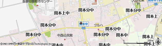 池上化粧品店周辺の地図