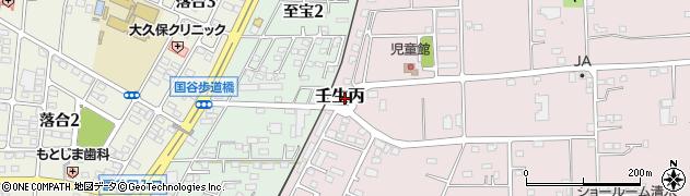 栃木県下都賀郡壬生町壬生丙周辺の地図