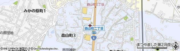 中山そうざい店 森山店周辺の地図