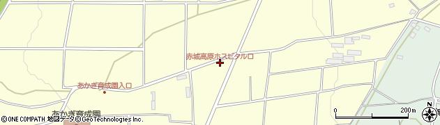 ホスピタル 赤城 高原