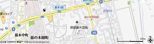 藤木団地周辺の地図