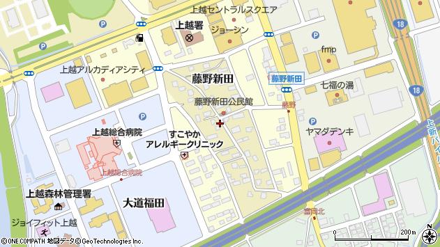 〒943-0171 新潟県上越市藤野新田の地図