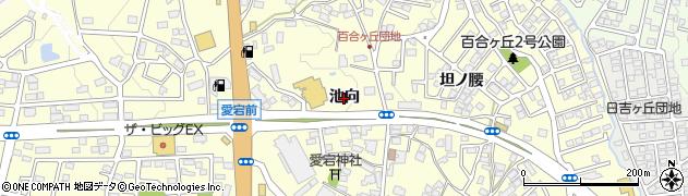 福島県郡山市富田町(池向)周辺の地図