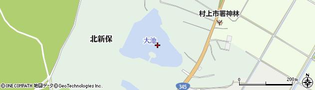 大池周辺の地図