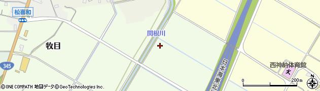 関根川周辺の地図