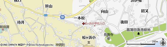 宮城県宮城郡七ヶ浜町菖蒲田浜一本松1周辺の地図