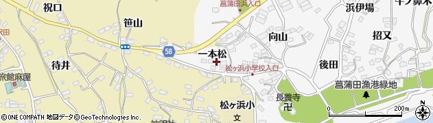 宮城県宮城郡七ヶ浜町菖蒲田浜一本松10周辺の地図
