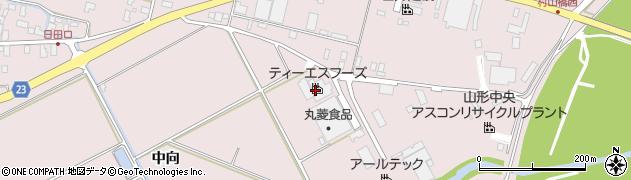 山形県寒河江市日田中向234周辺の地図
