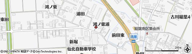 宮城県大崎市古川稲葉(鴻ノ巣浦)周辺の地図