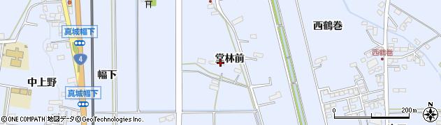 岩手県奥州市水沢真城(堂林前)周辺の地図