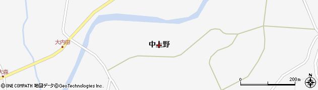 岩手県奥州市江刺玉里(中上野)周辺の地図