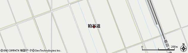 秋田県秋田市仁井田(粕谷道)周辺の地図