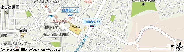 白鳥台5‐37周辺の地図
