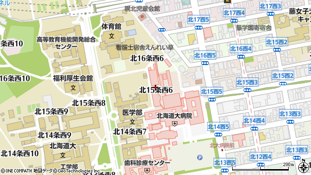 〒060-0815 北海道札幌市北区北十五条西6丁目の地図