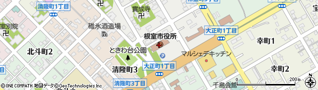 北海道根室市周辺の地図
