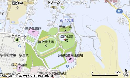 運動 公園 国分