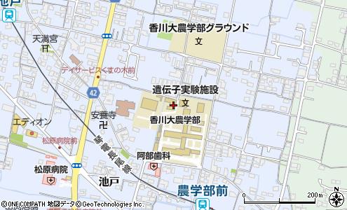 香川 大学 生協