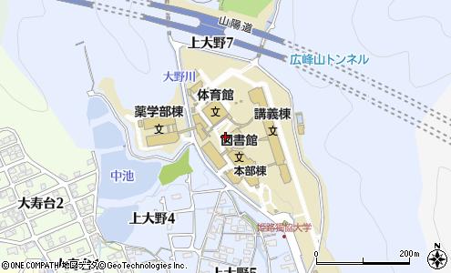 大学 姫路 獨協
