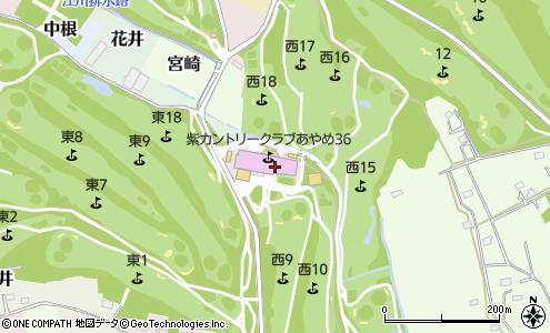 紫 カントリー クラブ 紫 あやめ 36