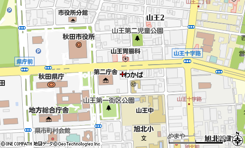 エコ システム ジャパン